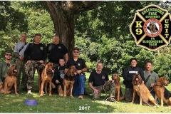 bloodhound-team
